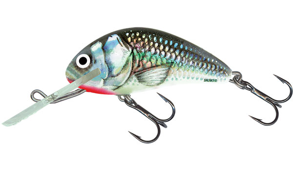 HORNET FLOATING - 6cm Holographic Grey Shiner