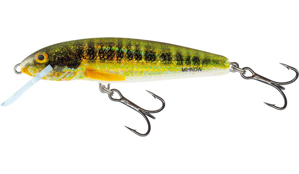 MINNOW FLOATING - 7cm Holo Real Minnow
