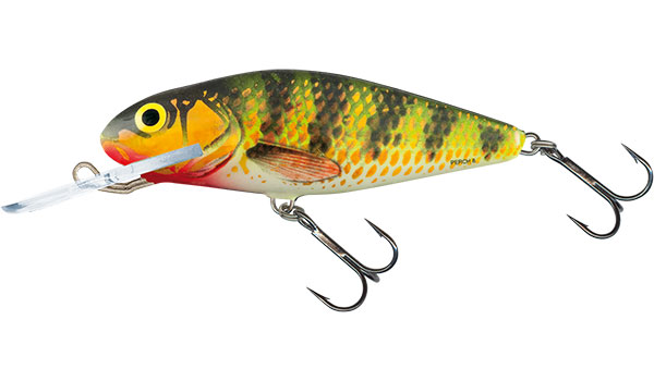 PERCH DEEP RUNNER - 8cm Holo Perch