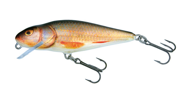 PERCH SHALLOW RUNNER - 12cm Real Roach