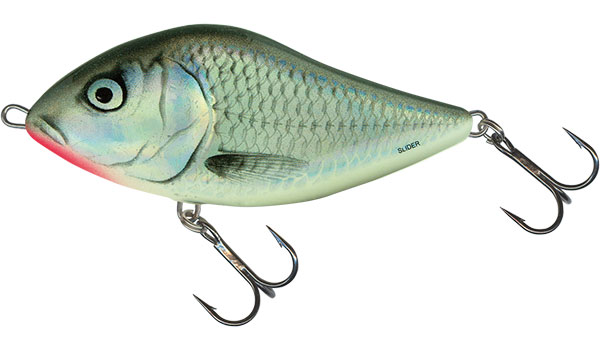 SLIDER FLOATING - 10cm Holo Grey Shiner