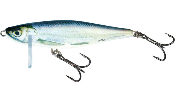 THRILL SINKING - 7cm Blue Fingerling