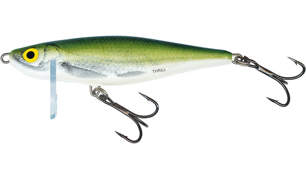 THRILL SINKING - 7cm Olive Bleak