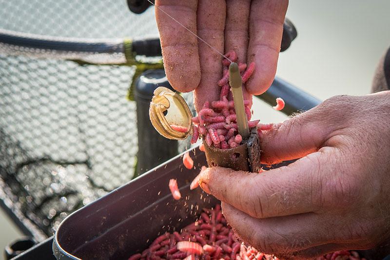 maggot-feeders-in-use-21jpg