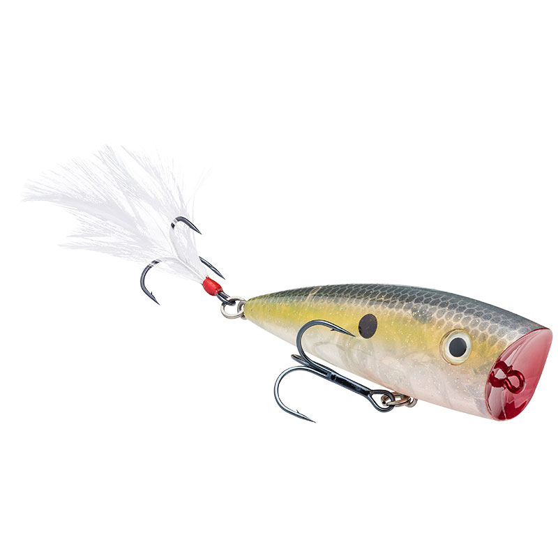 KVD Splash Clear Ghost Sexy Shad - 7cm 10.6g