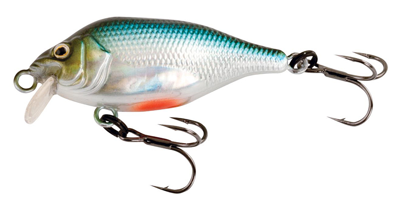 nhl475-funk-bug-sr-cool-herring-copyjpg