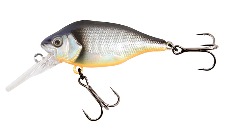 nhl484-funk-bug-dr-silver-baitfish-copyjpg