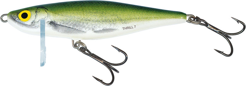THRILL SINKING - 9cm Olive Bleak