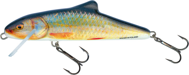 SKINNER FLOATING - 20cm Real Roach
