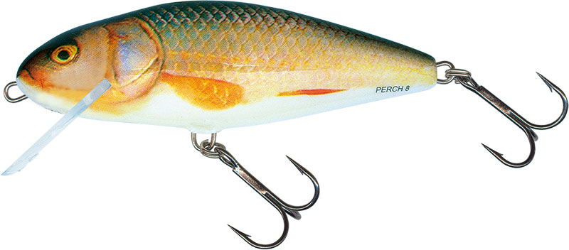 PERCH FLOATING - 14cm REAL ROACH