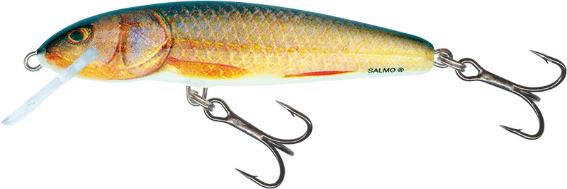 MINNOW FLOATING - 9cm REAL ROACH