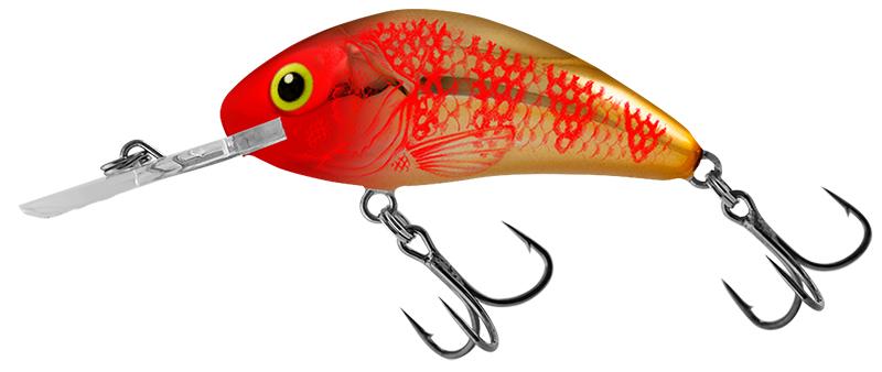 New Hornet Colours - Rattlin' Golden Red Head