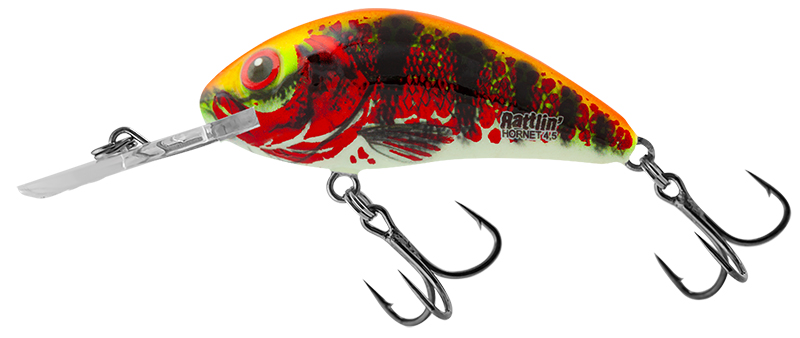 New Hornet Colours - Rattlin' Holo Red Perch