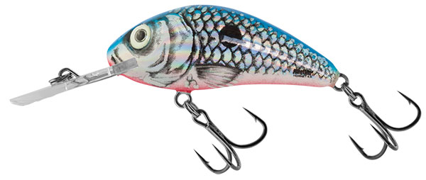 Rattlin Hornet 5.5 Floating Silver Blue Shad