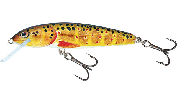 Minnow 5 Floating Trout