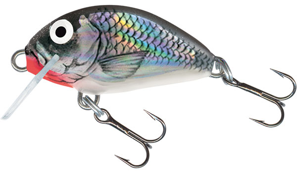 Tiny 3 Sinking Holographic Grey Shiner